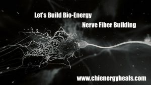 School of Chi Energy Nerve Fiber Building