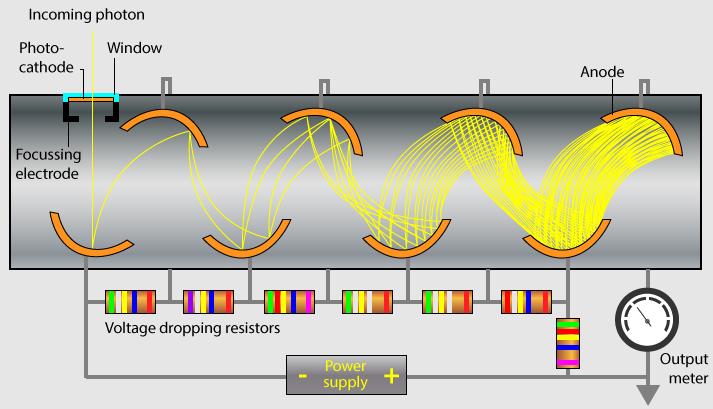 How Bioenergy Is Measured In The Body