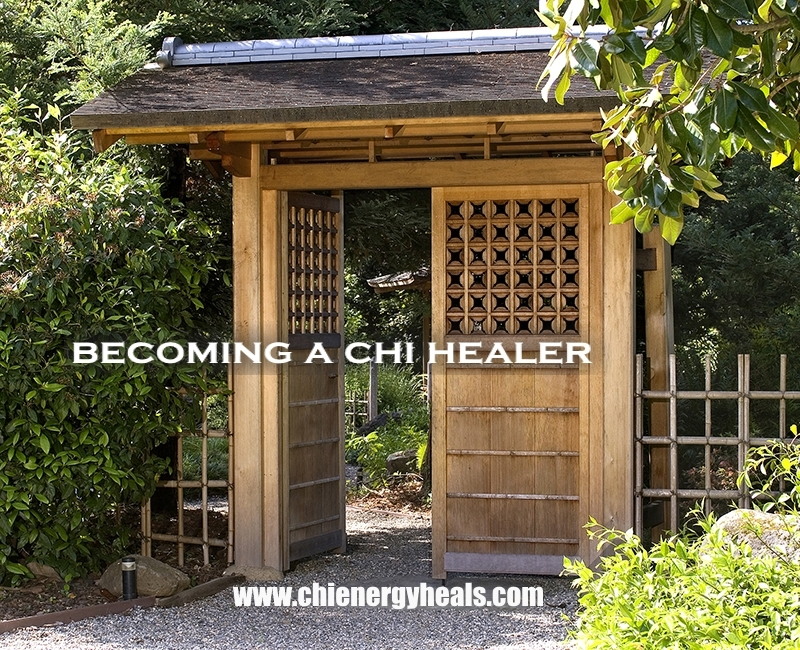 Learn To Harness Chi Energy In Our Bio Energy Healing Method